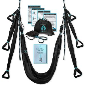 Yoga 4 You Aerial Yoga Swing Set